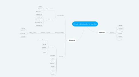 Mind Map: Función de relación en plantas