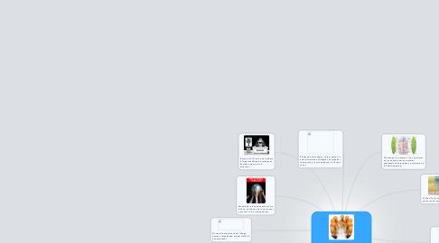 Mind Map: Modelos Administrativos existentes