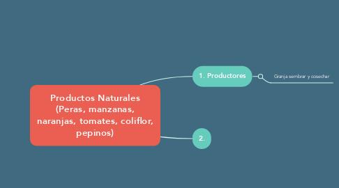 Mind Map: EL PROCESO CONTABLE