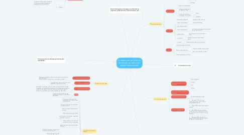 Mind Map: Fundamentos de las áreas de estudio en: educación general básica media