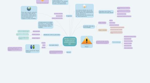 Mind Map: Planes y acciones establecidos en medio ambiente y SST.