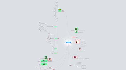 Mind Map: PETROGRAFIA