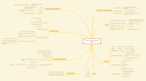 Mind Map: PLAN DE VACUNACIÓN COVID