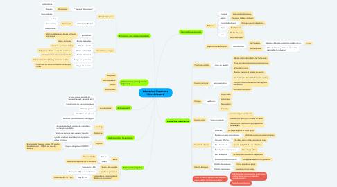 """Mind Map: Educación Financiera """"Microfinanzas"""""""