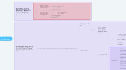 Mind Map: Procesos básicos del área de la administración