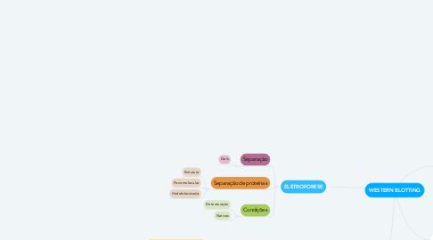 Mind Map: WESTERN BLOTTING