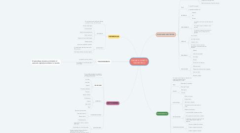 Mind Map: EXAMEN GINECO OBSTETRICO