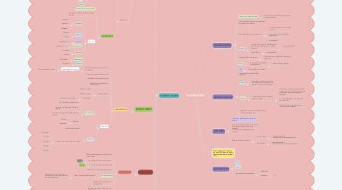 Mind Map: EUCARIOTAS