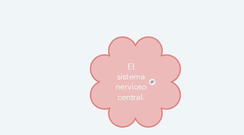 Mind Map: El sistema nervioso central.
