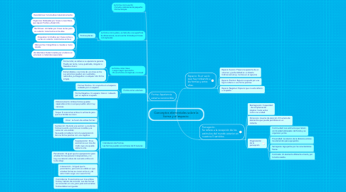 Mind Map: Conceptos elementales sobre la forma y el espacio.