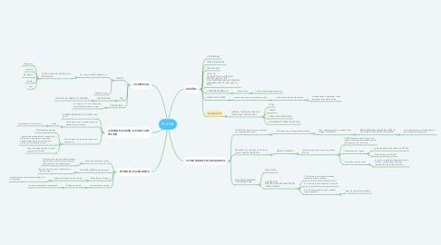 Mind Map: P23.MX
