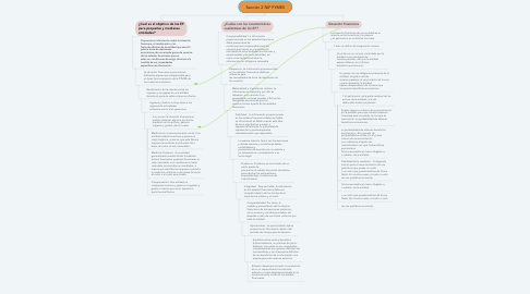 Mind Map: Sección 2 NIF PYMES
