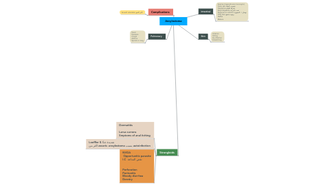 Mind Map: Ancylostoma