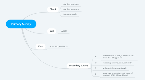 Mind Map: Primary Survey