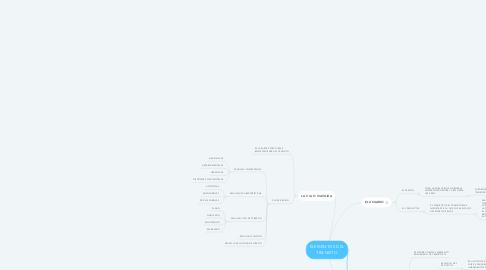 Mind Map: ELEMENTOS DEL TRANSITO