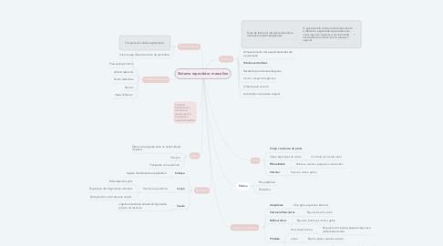 Mind Map: Sistema reprodutor masculino