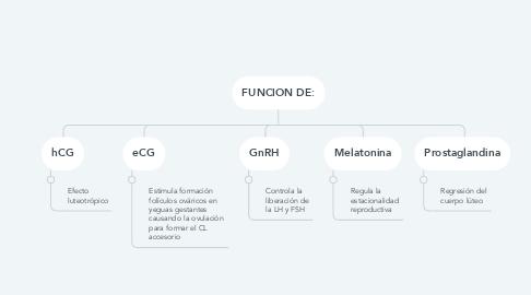 Mind Map: FUNCION DE: