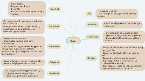 Mind Map: Huden