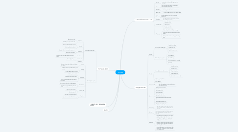 Mind Map: APLS
