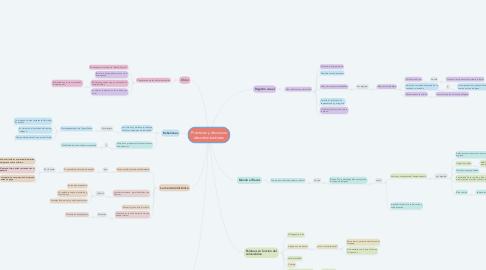 Mind Map: Prácticas y discursos descolonizadores