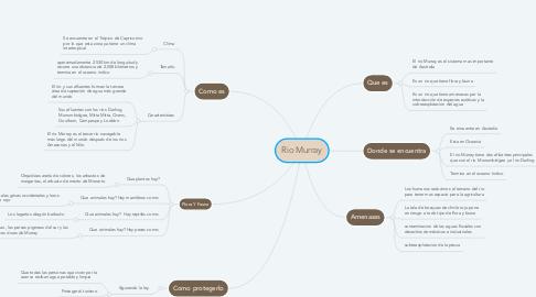 Mind Map: Rio Murray