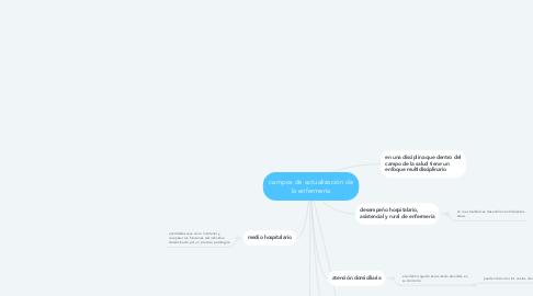 Mind Map: campos de actualización de la enfermería