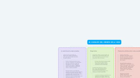 Mind Map: EL CUIDADO DEL ORIGEN DE LA VIDA