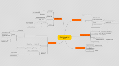Mind Map: Organisation & Control of Prokaryotic & Eukaryotic Genome