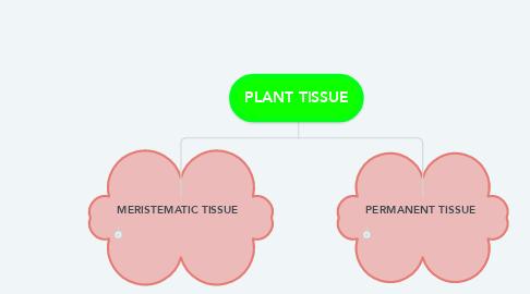 Mind Map: PLANT TISSUE