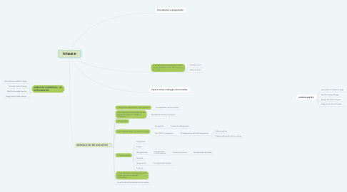 Mind Map: TITULO II