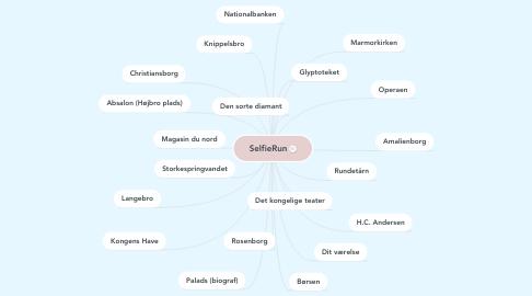 Mind Map: SelfieRun