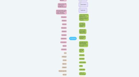 Mind Map: Artrópodos