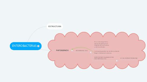 Mind Map: ENTEROBACTERIAS