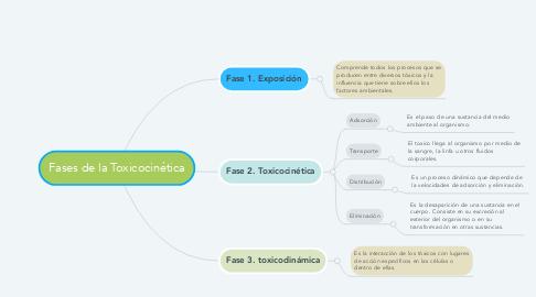Mind Map: Fases de la Toxicocinética