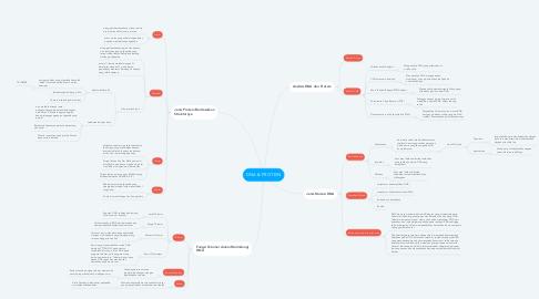 Mind Map: DNA & PROTEIN