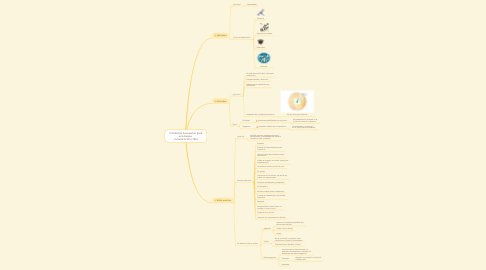 Mind Map: Conductas necesarias para una buena  comunicación (799)
