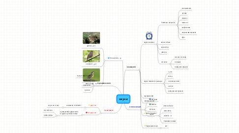 Mind Map: звуки