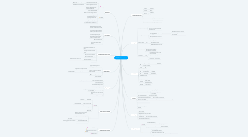 Mind Map: QBSR Nathalie's team