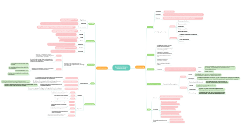 Mind Map: Benchmarking & Outsourcing