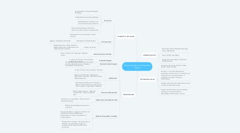 Mind Map: Determinantes Sociales de la Salud