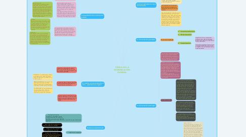 Mind Map: TEORIA DE LA COMUNICACIÓN HUMANA