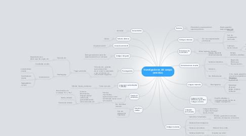 Mind Map: Investigaciones del campo semiótico