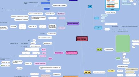 Mind Map: Métodos básicos - biologia molecular