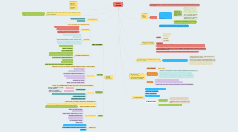 Mind Map: TÍTULOS VALORES