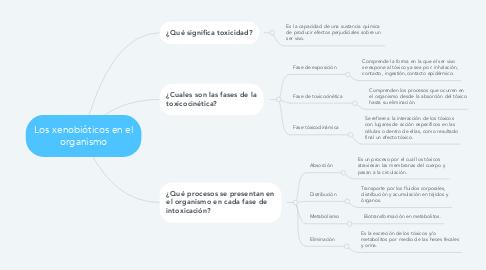 Mind Map: Los xenobióticos en el organismo
