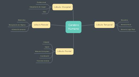 Mind Map: Cerebro Humano