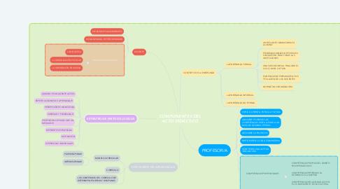 Mind Map: COMPONENTES DEL ACTO DIDÁCTICO