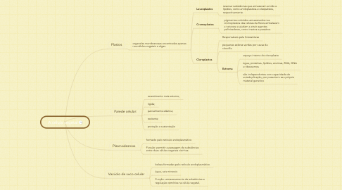 Mind Map: A célula vegetal