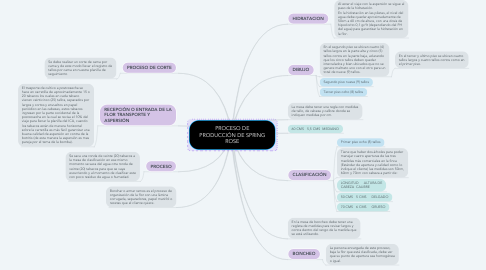 Mind Map: PROCESO DE PRODUCCIÓN DE SPRING ROSE