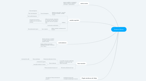 Mind Map: Sistema Motor